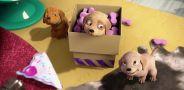 Приключения Барби в доме мечты