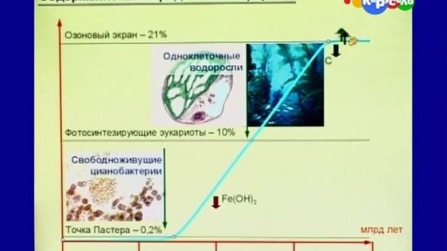 Естествознание. Лекции + опыты. Выпуск 25. Строение растительной клетки