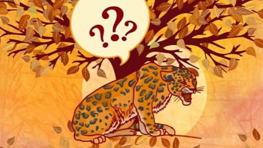 Выпуск 256 «Маугли». Видео 2