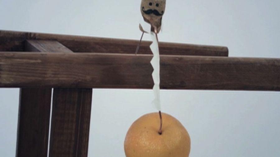 Апельсин-плотник