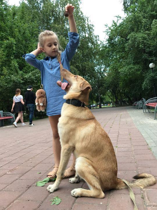 Григорьева Елизавета Игоревна