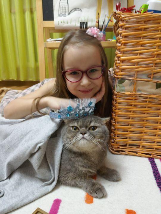 Шепелева Анастасия Александровна