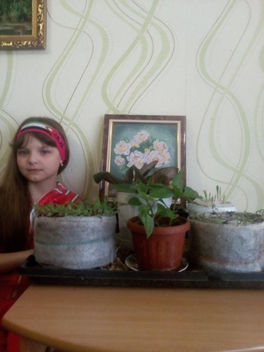 Хворова Елена Сергеевна