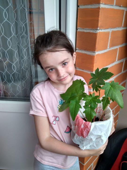 Копейкина Олеся Анатольевна