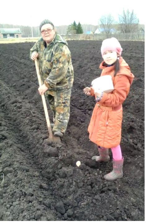 Архипова Вероника Александровна
