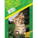 Action! Набор цветного мелованного картона 8 листов 2 шт