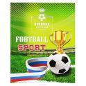 Prof Press Дневник школьный Спорт футбол 48 листов