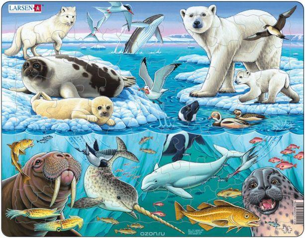 Larsen Пазл Арктика