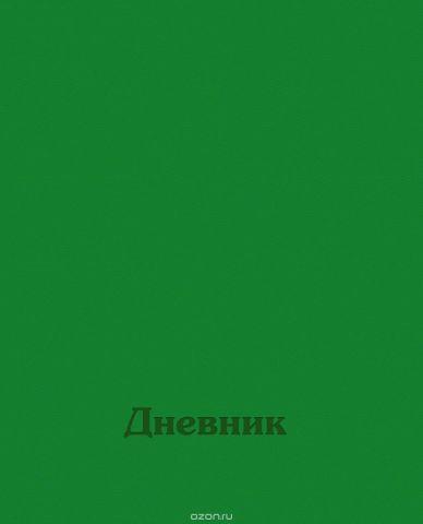 BG Дневник школьный Дневник для 1-4 классов цвет зеленый